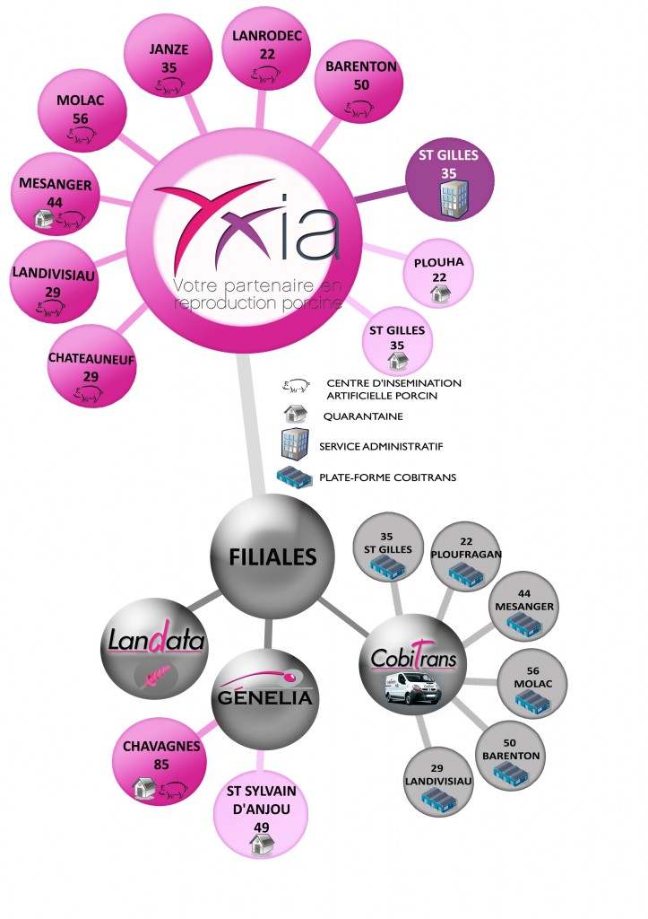 structure groupe YXIA revue